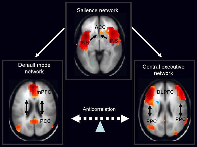 Как думает наш мозг: два уровня мышления